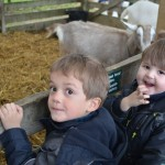 Visit to Pennywell Farm